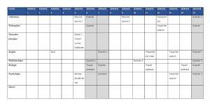 Tableau organisé sur 15 semaines pour organiser sa session